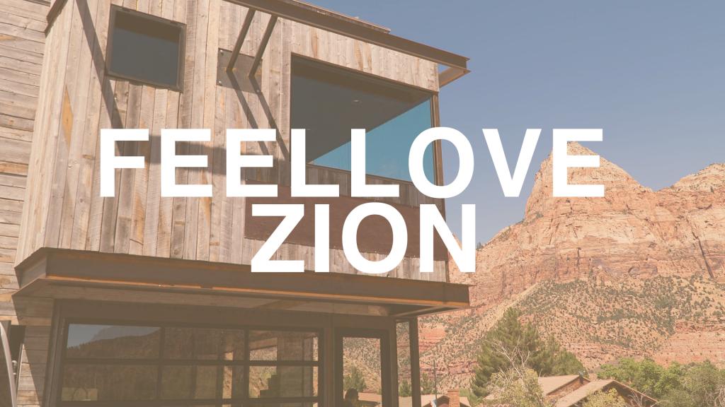 feellove zion